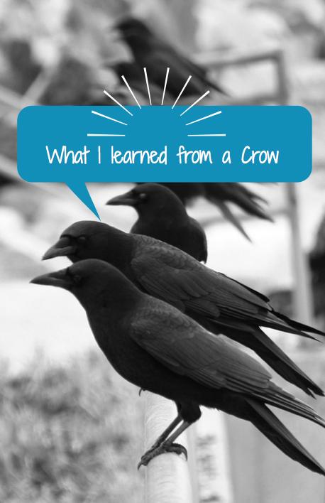 Crow-Pose-yoga